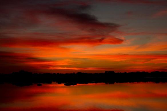 Sun rises over the Pantanal
