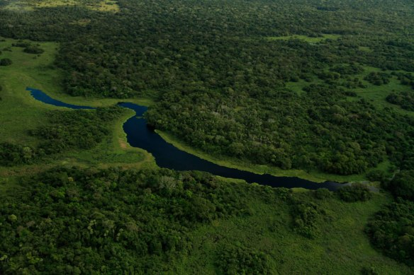 From the air one truly gets an idea of the pure beauty of the Pantanal