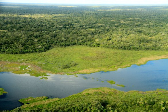 The largest wetland in the world